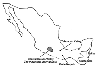 Diversas localizaciones - Guilá Naquitz