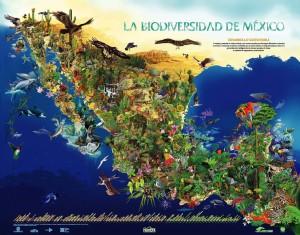 La biodiversidad de un solo país no cabe en un barco, pensemos en la del planeta entero.