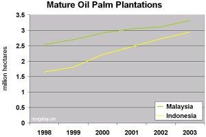 Evolución de las plantaciones de palma de aceite en Borneo