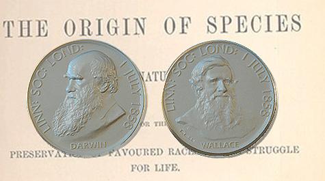 Darwin & Wallace postularon el mecanismo de la Selección Natural en 1858