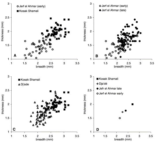 Comparación entre las semillas de cebada de los yacimientos de Jerf el Ahmar (temprano y tardío), Dja'de y Kosak Shamali. Nótese el incremento en grosor (eje de ordenadas) y en anchura (eje de abscisas) con el paso del tiempo. Crédito: Ref. 20