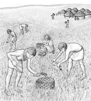 Representación de un poblado Natufians (11.000-15.000 BP) Crédito: Ref. 11