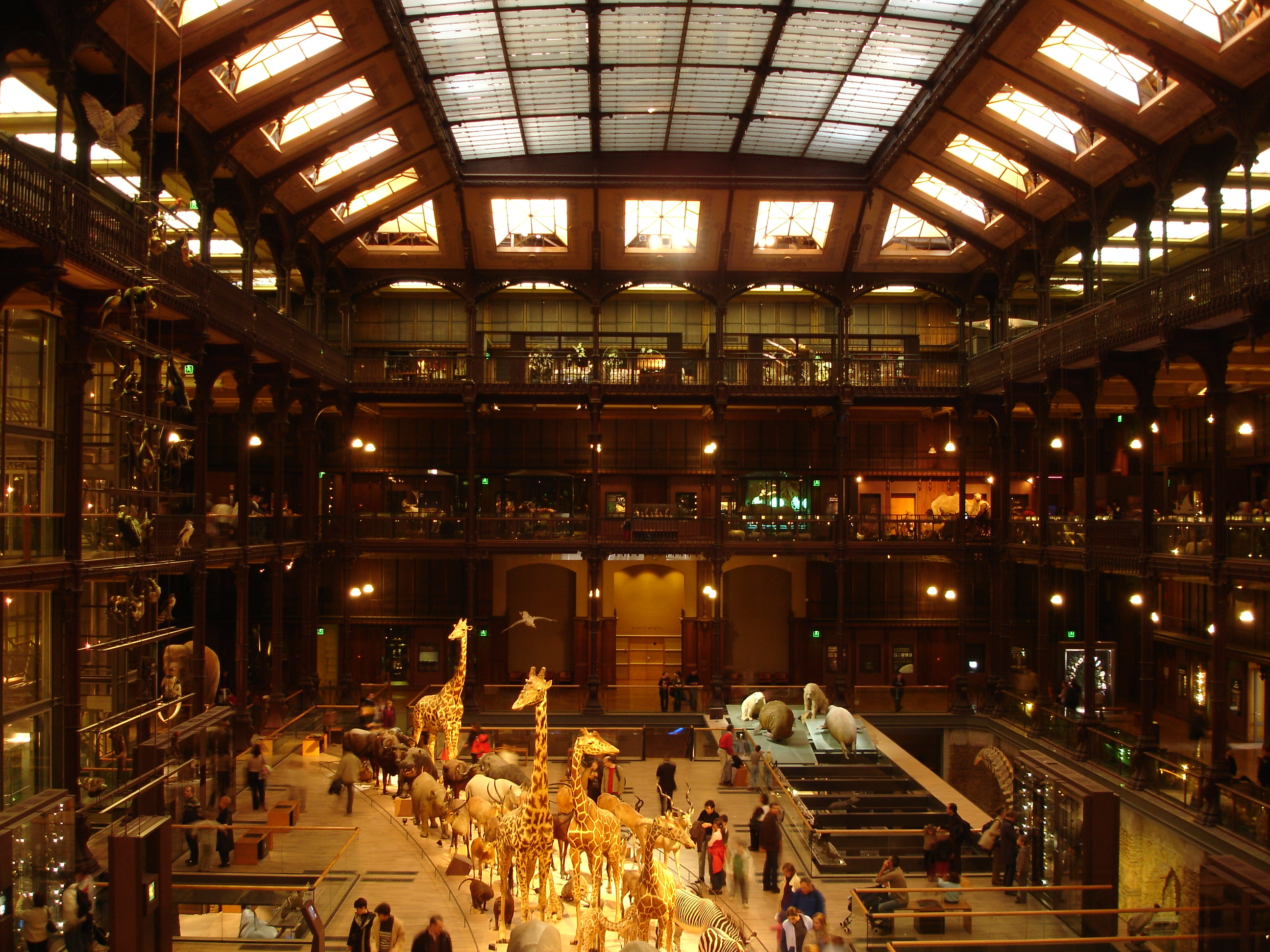 Destinos veraniegos (II): Gran Galería de la Evolución de París | La ...