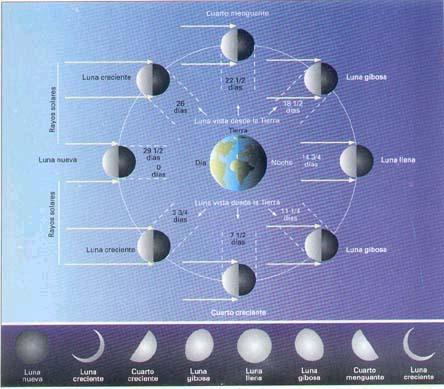 Feliz nuevo ciclo la ciencia y sus demonios for Fases de la luna hoy