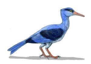 Longipteryx, del Cretácico inferior (120 m.a.)