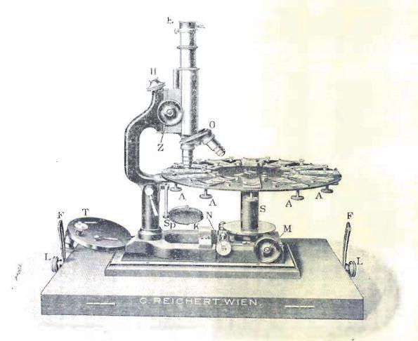 Elezegui, A. 1908. Un nuevo modelo de microscopio para la enseñanza. Boletín de la Real Sociedad Española de Historia Natural, 8:442-444