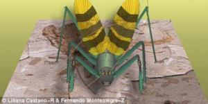 Reproducción de Archaboilus musicus, realizada por Lliliana Castaño y Fernando Montealegre.
