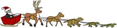La evolución de Rudolf