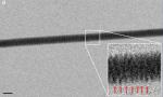 Esta es una de las imágenes en las que se puede observar la periodicidad de la doble hélice (imagen del artículo).