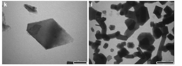 Imágenes al microscopio electrónico del residuo presente en diluciones 30C (K) y 200C (l) de un preparado que contiene estaño.