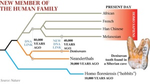 diario de un ateo evolucion humana denisovano neandertal arbol genealogico