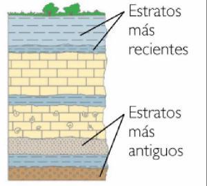 estratos-2