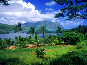 Hawai, algo bíblico si que parece: ¡el paraiso!