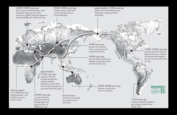 migraciones humanas y DNa mitocondrial evolucion