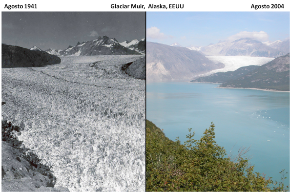 muir-glaciar