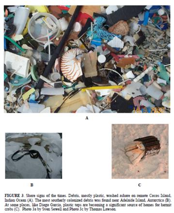 ejemplo de plasticos contaminantes en islas remotas