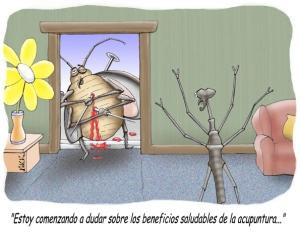 acupuntura pseudociencia peligro placebo pseudomedicina
