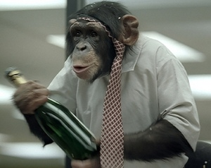 chimpance-bebiendo