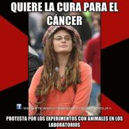 experimentacion animal humanos cancer