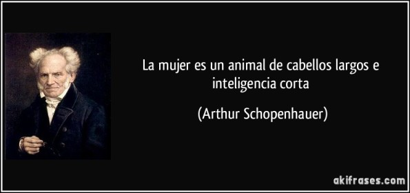 frase-la-mujer-es-un-animal-de-cabellos-largos-e-inteligencia-corta-arthur-schopenhauer