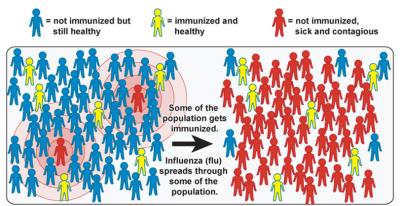 inmunidad individual