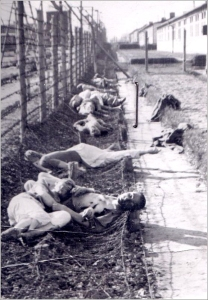 Prisioneros muertos junto a la alambrada de Mauthausen