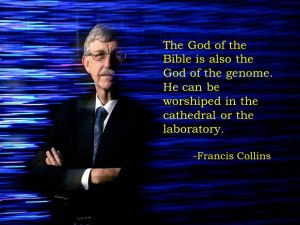 francis collins evolution