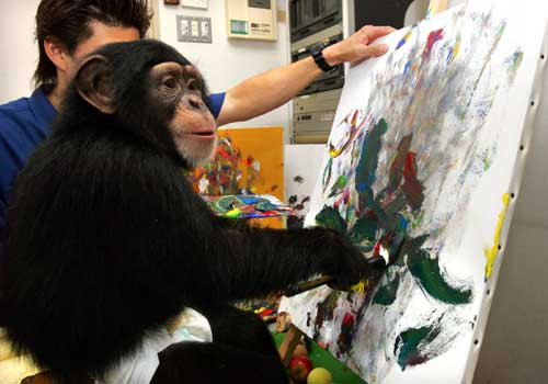 Asuka, three-year-old female chimpanzee, draws an oil painting at a studio at Izu Shaboten Park in Ito, southwest of Tokyo September 19, 2004. Asuka made her debut in an exhibition with her 50 painting works on September 17 in Tokyo. REUTERS/Kimimasa Mayama