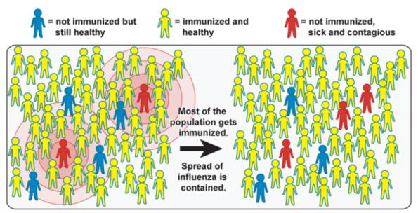 inmunidad-de-grupo 1