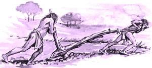 arado neolitico