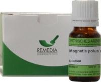 magnetis-polus-australis-dilution.3067