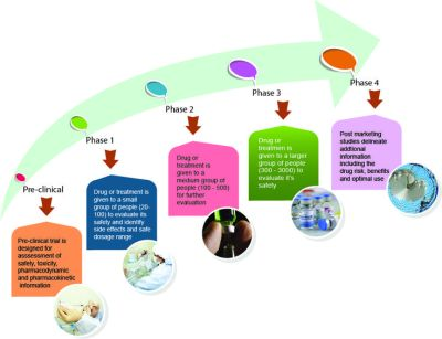 clinical-trial-stages