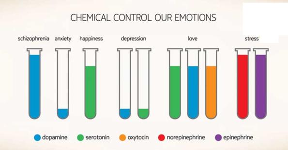 control-quimico-de-las-emociones