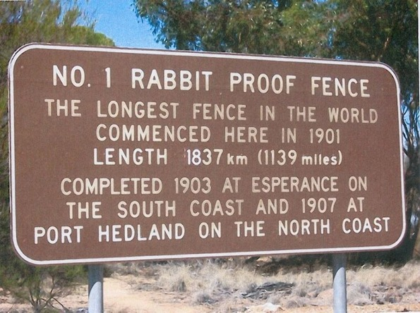 rabbit-proof-fence-76