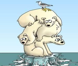 oso-polar-cambio-climatico