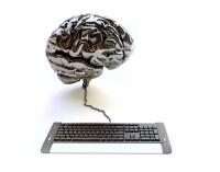 cerebro-algoritmo