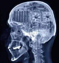 cerebro-algoritmos